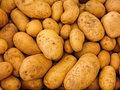 kruimige aardappel biologisch